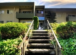 Kamel Point Village Apartments - Victoria, British Columbia - Apartment for Rent